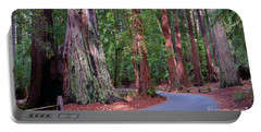 Road Through Redwood Grove Portable Battery Charger