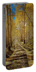 Portable Battery Charger featuring the photograph Road To Gold In Colorado by Steven Reed