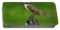 Roadside Kiskadee Portable Battery Charger by Tony Beck