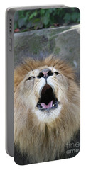 Roar Portable Battery Charger