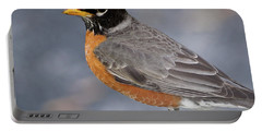 Portable Battery Charger featuring the photograph Robin by Douglas Stucky