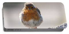 Robin Front Portable Battery Charger