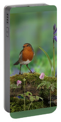 Robin In Spring Wood Portable Battery Charger
