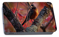 Portable Battery Charger featuring the photograph Robin In The Dogwood by Douglas Stucky