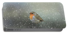 Robin In Winter Portable Battery Charger