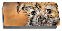 Portable Battery Charger featuring the photograph Robin by Mindy Newman