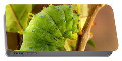 Portable Battery Charger featuring the photograph Robin Moth Caterpillar by Claire Bull