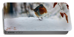 Robin Redbreast Portable Battery Charger