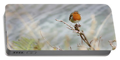 Robin Resting Portable Battery Charger