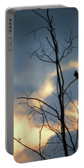 Portable Battery Charger featuring the photograph Robin Watching Sunset After The Storm by Sandi OReilly
