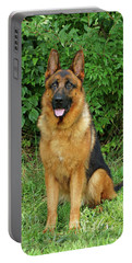 Portable Battery Charger featuring the photograph Rocco Sitting by Sandy Keeton