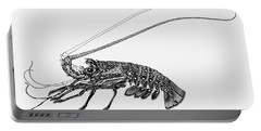 Rock Lobster Portable Battery Charger