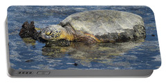 Portable Battery Charger featuring the photograph Rock Pillow by Pamela Walton