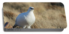 Rock Ptarmigan Portable Battery Charger