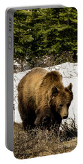 Rockies Grizzly Portable Battery Charger