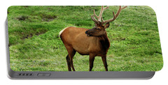 Portable Battery Charger featuring the photograph Rocky Mountain Elk 3 by Marie Leslie