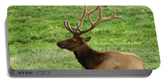 Portable Battery Charger featuring the photograph Rocky Mountain Elk 4 by Marie Leslie