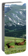 Portable Battery Charger featuring the photograph Rocky Mountain Elk 5 by Marie Leslie