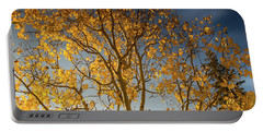 Rocky Mountain Fall Colors Portable Battery Charger