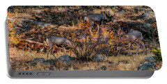 Rocky Mountain National Park Deer Colorado Portable Battery Charger