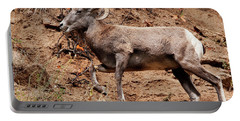 Rocky Mt. Big Horn Sheep Portable Battery Charger