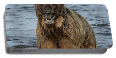 Rogue Bear  Portable Battery Charger