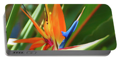 Portable Battery Charger featuring the photograph Romantic Skies Bird Of Paradise by Aimee L Maher Photography and Art Visit ALMGallerydotcom
