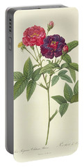 Rosa Gallica Purpurea Velutina Portable Battery Charger