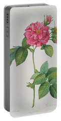 Rosa Turbinata Portable Battery Charger by Pierre Joseph Redoute