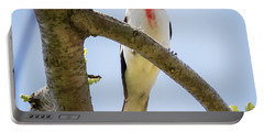 Portable Battery Charger featuring the photograph Rose-breasted Grosbeak Looking At You by Ricky L Jones