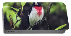 Rose-breasted Grosbeak On Tree Branch Portable Battery Charger