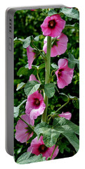 Rose Of Sharon Vine Portable Battery Charger