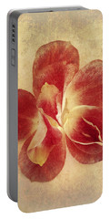 Portable Battery Charger featuring the photograph Rose Petals by Linda Sannuti