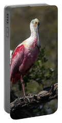 Roseate Spoonbill Portable Battery Charger by Lamarre Labadie