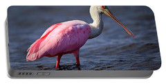 Roseate Spoonbill, Myakka River State Park, Florida Portable Battery Charger