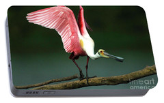 Rosiette Spoonbill Texas Portable Battery Charger by Bob Christopher