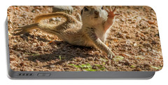 Round-tailed Ground Squirrel Stretch Portable Battery Charger by Tam Ryan