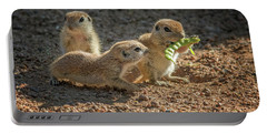 Round-tailed Ground Squirrels 1198 Portable Battery Charger by Tam Ryan