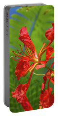Royal Poinciana Flower Portable Battery Charger