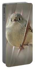 Portable Battery Charger featuring the photograph Ruby-crowned Cuteness by Anita Oakley