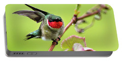Portable Battery Charger featuring the photograph Ruby Garden Hummingbird by Christina Rollo