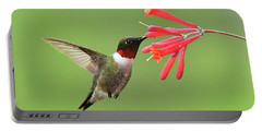 Ruby-throated Hummer Portable Battery Charger