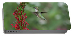 Ruby Throated Hummingbird 2016-4 Portable Battery Charger by Thomas Young