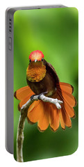 Portable Battery Charger featuring the photograph Ruby's Glory by Rachel Lee Young