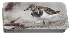 Ruddy Turnstone On The Beach Portable Battery Charger