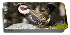 Ruffled Grouse II Portable Battery Charger