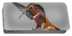 Rufous Male Hummingbird Portable Battery Charger