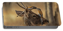 Rufous Treepies Portable Battery Charger