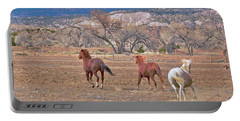 Portable Battery Charger featuring the photograph Run With The Wind Under The Storm Clouds by Debby Pueschel