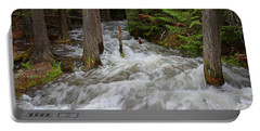 Runoff On Jackson Creek Portable Battery Charger